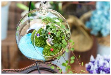 Terrarium, Taman Mini yang Bisa Bikin Pikiran Kita Lebih Bahagia dan Mudah Konsentrasi